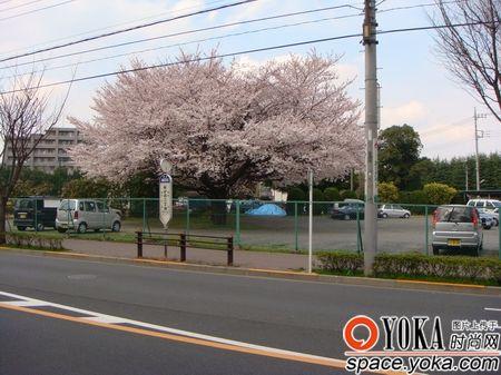 东京都东大和市街景 wujingwei5696的时尚图片图片